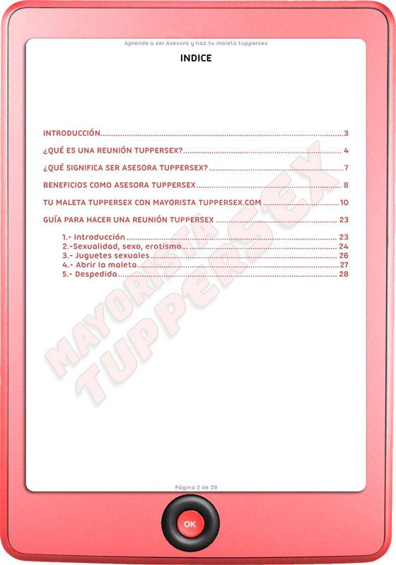 Libro-electronico-indice